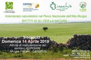 5 maggio 2019 Murgia Fiscale-web