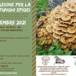 corso funghi 2021 evento (2)